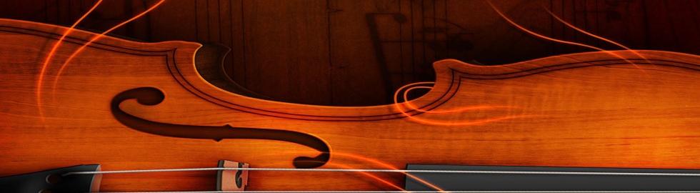 وب سایت رسمی آموزشگاه موسیقی شاورک